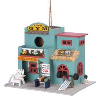 Workout Gym Birdhouse